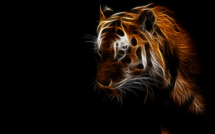 wallpapers animals gt wallpapers felines tigers light