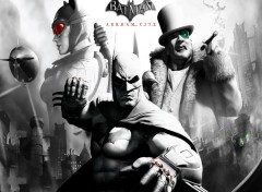 Fonds d'�cran Jeux Vid�o batman arkham city