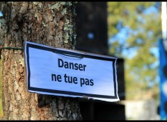 Fonds d'�cran Nature Danser ne tue pas !