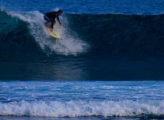 Wallpapers Trips : Africa Surfin' in the sun.....