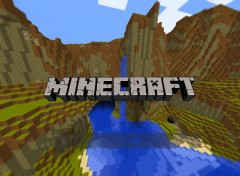 Jeux Vid�o play minecraft