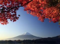 Voyages : Asie Mt. Fuji