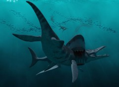  Art - Numrique Megalodon