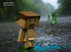 Jeux Vid�o skin Minecraft