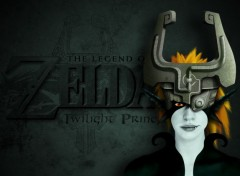 Jeux Vid�o Twilight Princess