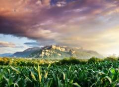 Nature Ma vall�e