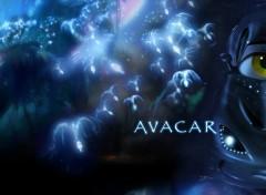 Cartoons Avacar