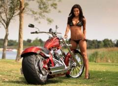 Motos Image sans titre N�352799